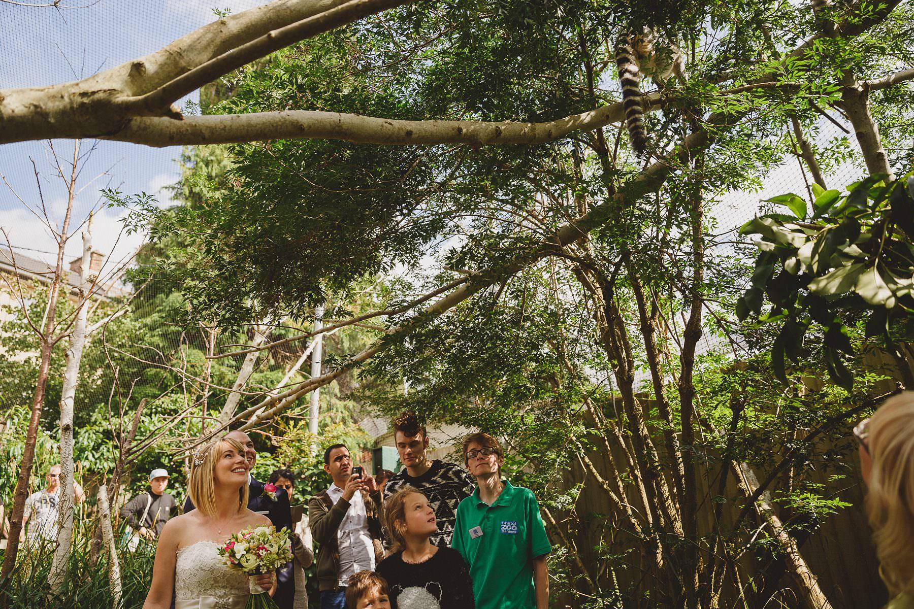 weddings-at-bristol-zoo-014