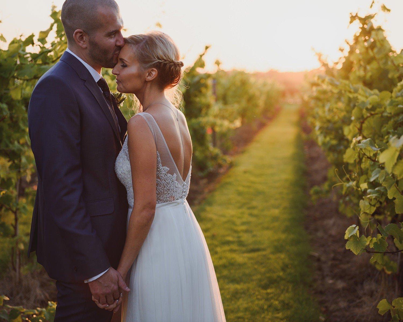 vineyard wedding portraits