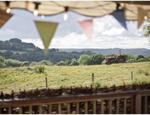 river cottage wedding photography: esme + mike