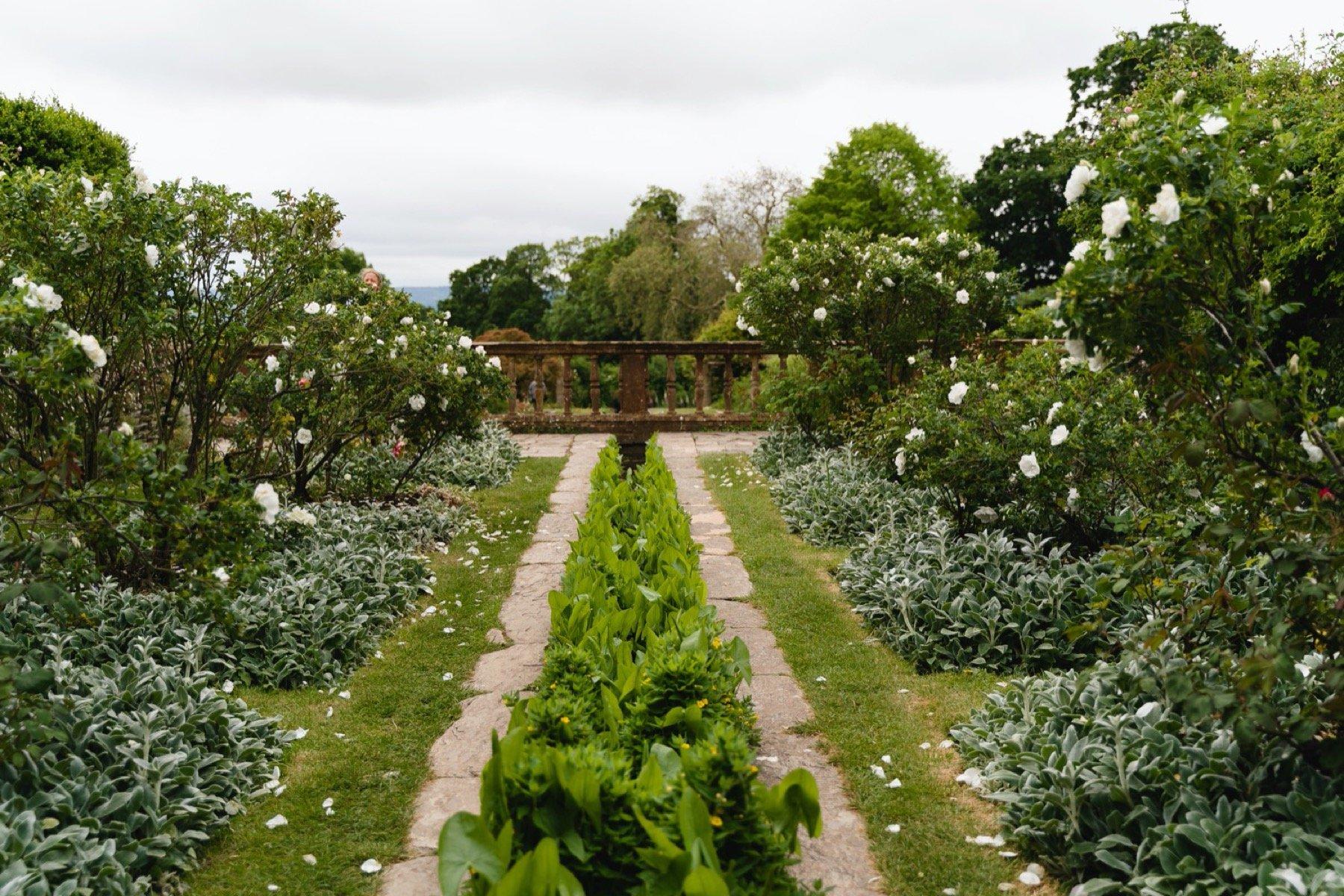 hestercombe gardens view